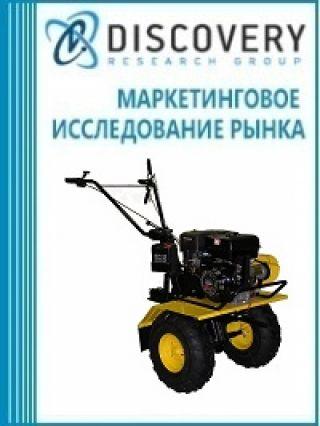 Анализ рынка мотоблоков и мотокультиваторов в России