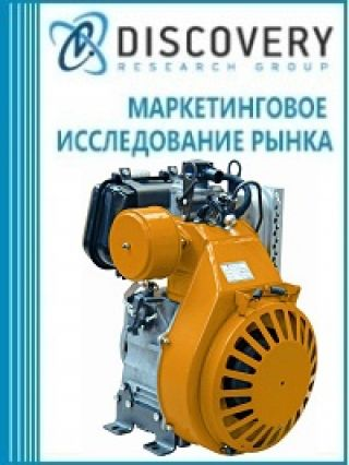 Маркетинговое исследование - Анализ рынка дизельных и бензиновых двигателей малой и средней мощности в России
