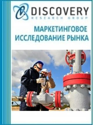 Маркетинговое исследование - Анализ рынка геофизических работ в России