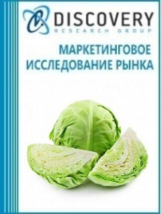 Маркетинговое исследование - Анализ рынка капусты в России