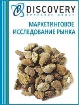 Маркетинговое исследование - Анализ рынка каустического кальцинированного магнезита в России