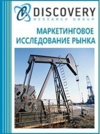 Маркетинговое исследование - Анализ рынка контроля за разработкой месторождений в России