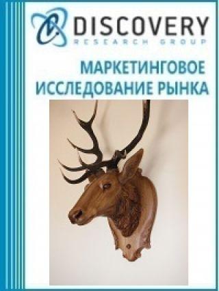 Маркетинговое исследование - Анализ рынка кости и рогового стержня в России