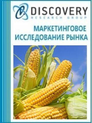 Маркетинговое исследование - Анализ рынка кукурузы в России