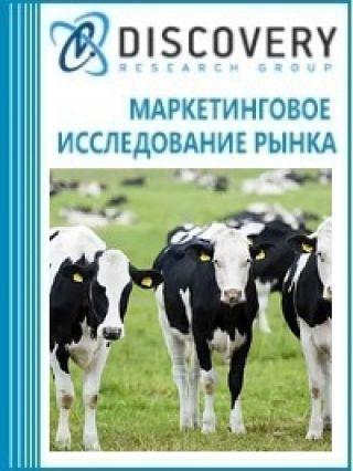 Маркетинговое исследование - Анализ рынка племенного крупного рогатого скота в России
