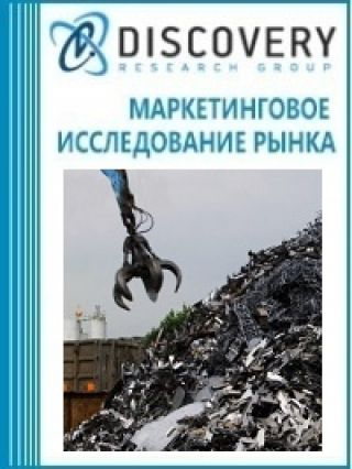 Анализ рынка предприятий с многотоннажными отходами в России