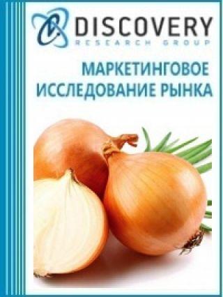 Маркетинговое исследование - Анализ рынка репчатого лука в России