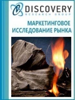 Маркетинговое исследование - Анализ рынка сланцевого газа в России