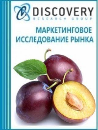 Маркетинговое исследование - Анализ рынка слив в России