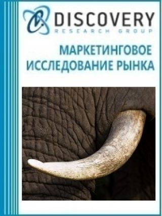 Анализ рынка слоновой кости, панцирей черепах, китового уса и щетины, оленьего рога, копыт, ногтей, когтей, клювов в России