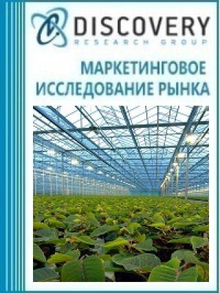 Маркетинговое исследование - Анализ рынка тепличных комплексов в России