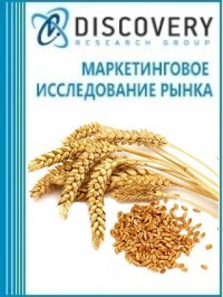 Маркетинговое исследование - Анализ рынка ячменя в России