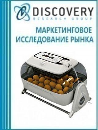 Анализ рынка яиц для инкубации в России