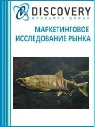 Маркетинговое исследование - Анализ рынка живой кеты в России