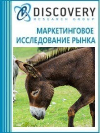 Анализ рынка живых ослов в России