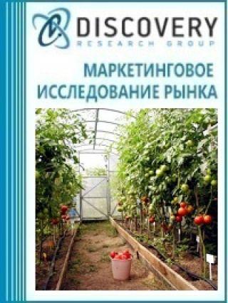 Маркетинговое исследование - Бизнес-план тепличного хозяйства по выращиванию овощей
