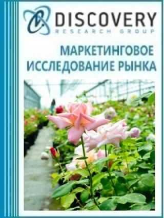 Маркетинговое исследование - Бизнес-план тепличного комплекса по выращиванию цветов на срезку