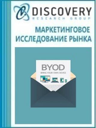 Маркетинговое исследование - Перспективы внедрения технологий bring-your-own-device (BYOD)