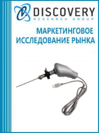 Маркетинговое исследование - Анализ рынка зондирующего и эндоскопического оборудования в России