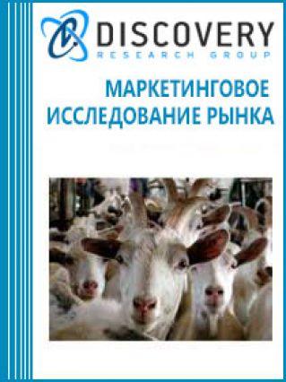 Анализ рынка овцеводства и козоводства в России