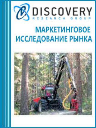 Маркетинговое исследование - Лесозаготовительная и лесопильно-деревообрабатывающая промышленность России