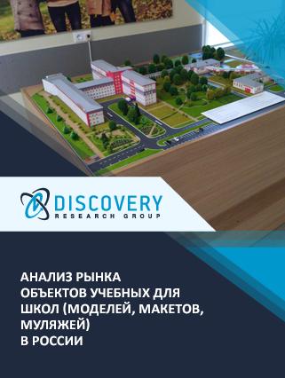 Анализ рынка объектов учебных для школ (моделей, макетов, муляжей) в России