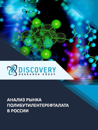 Анализ рынка полибутилентерефталата в России (с базой импорта-экспорта)