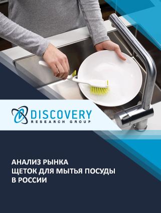Анализ рынка щеток для мытья посуды в России