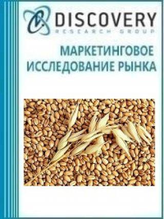 Анализ рынка семян ячменя озимого в России
