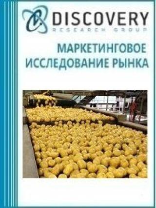 Анализ рынка первичной переработки картофеля и прочих овощей в России