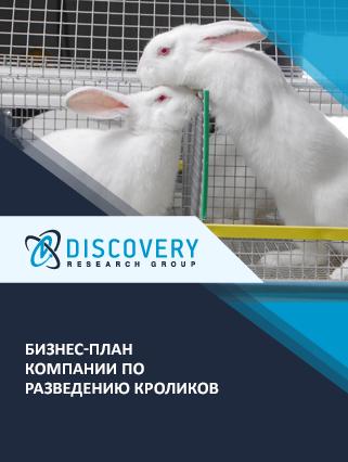 Бизнес-план компании по разведению кроликов