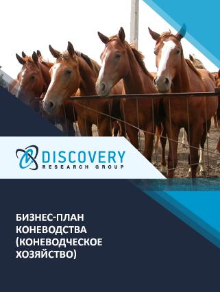 Бизнес-план коневодства (коневодческое хозяйство)