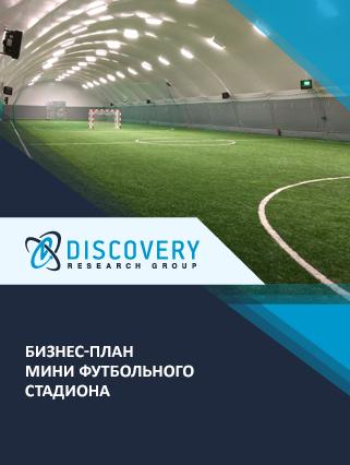 Бизнес-план мини футбольного стадиона