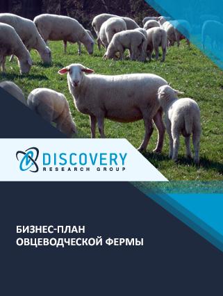 Бизнес-план овцеводческой фермы