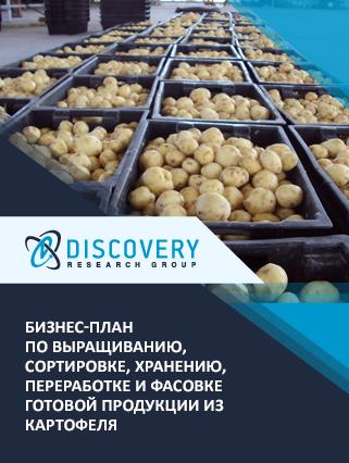 Бизнес-план по выращиванию, сортировке, хранению, переработке и фасовке готовой продукции из картофеля