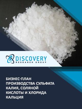 Бизнес-план производства сульфата калия, соляной кислоты и хлорида кальция