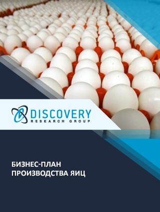 Бизнес-план производства яиц