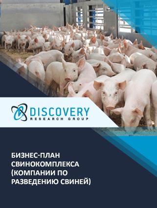 Бизнес-план свинокомплекса (компании по разведению свиней)