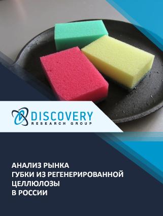 Анализ рынка губки из регенерированной целлюлозы в России