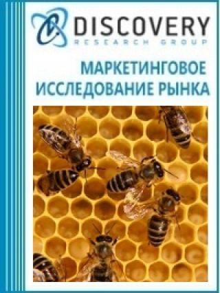 Анализ рынка пчел в России