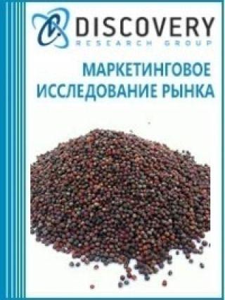 Анализ рынка рапса в России