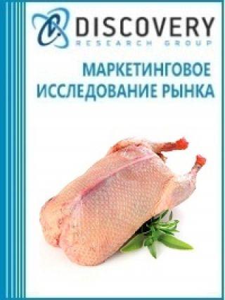 Анализ рынка замороженного мяса утки в России