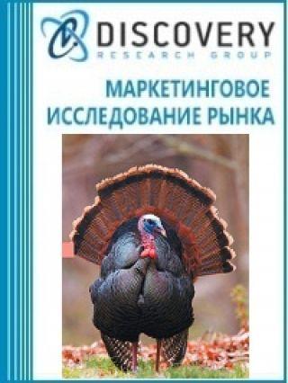 Анализ рынка живой индейки в России