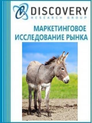 Анализ рынка живых лошадей, ослов, мулов и лошаков в России