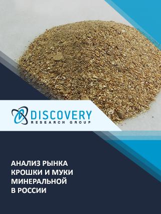 Маркетинговое исследование - Анализ рынка крошки и муки минеральной в России