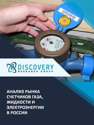 Анализ рынка счетчиков газа, жидкости и электроэнергии в России