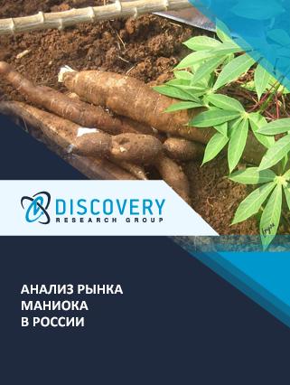 Маркетинговое исследование - Анализ рынка маниока в России