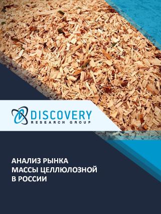 Маркетинговое исследование - Анализ рынка массы целлюлозной в России