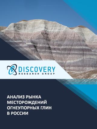 Маркетинговое исследование - Анализ рынка месторождений огнеупорных глин в России