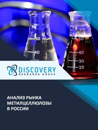 Маркетинговое исследование - Анализ рынка метилцеллюлозы в России
